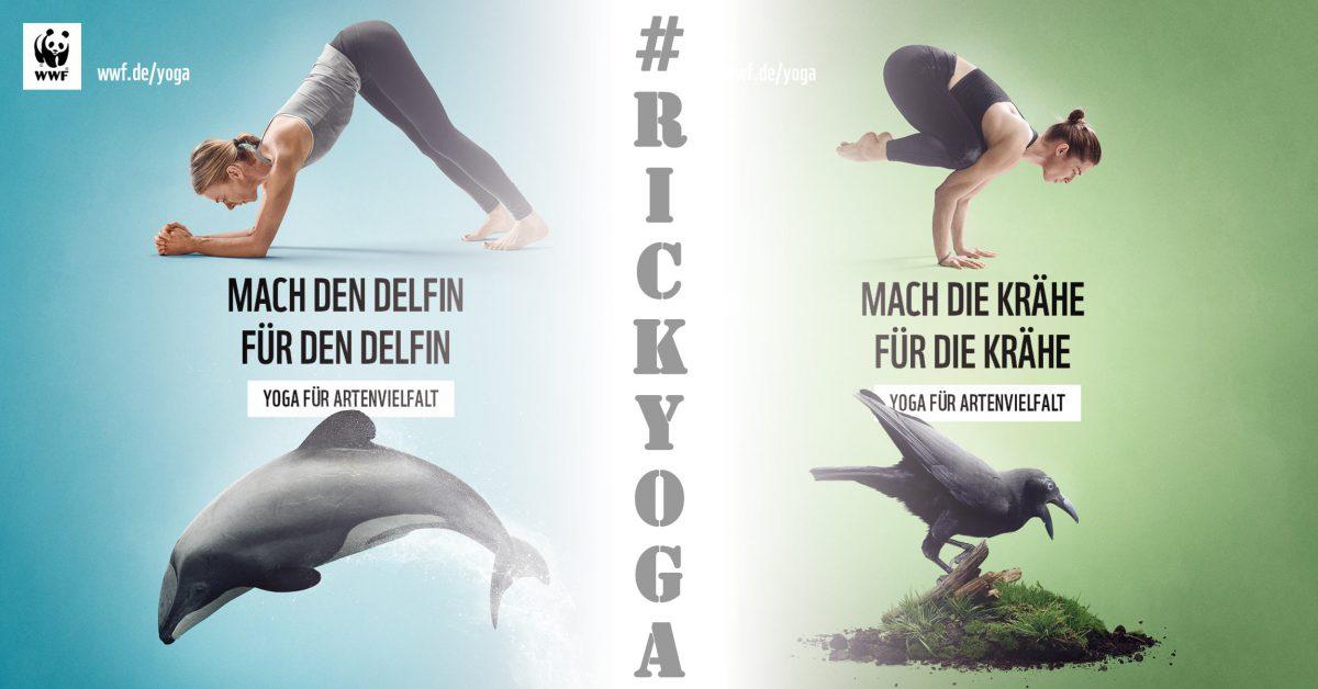 yogafuerartenvielfalt